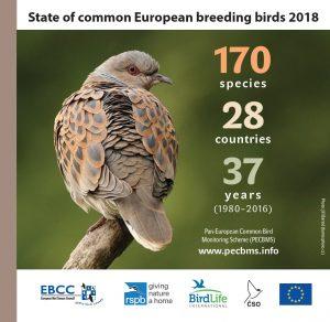 Report on the Pan-European Common Bird Monitoring Scheme, June 2019